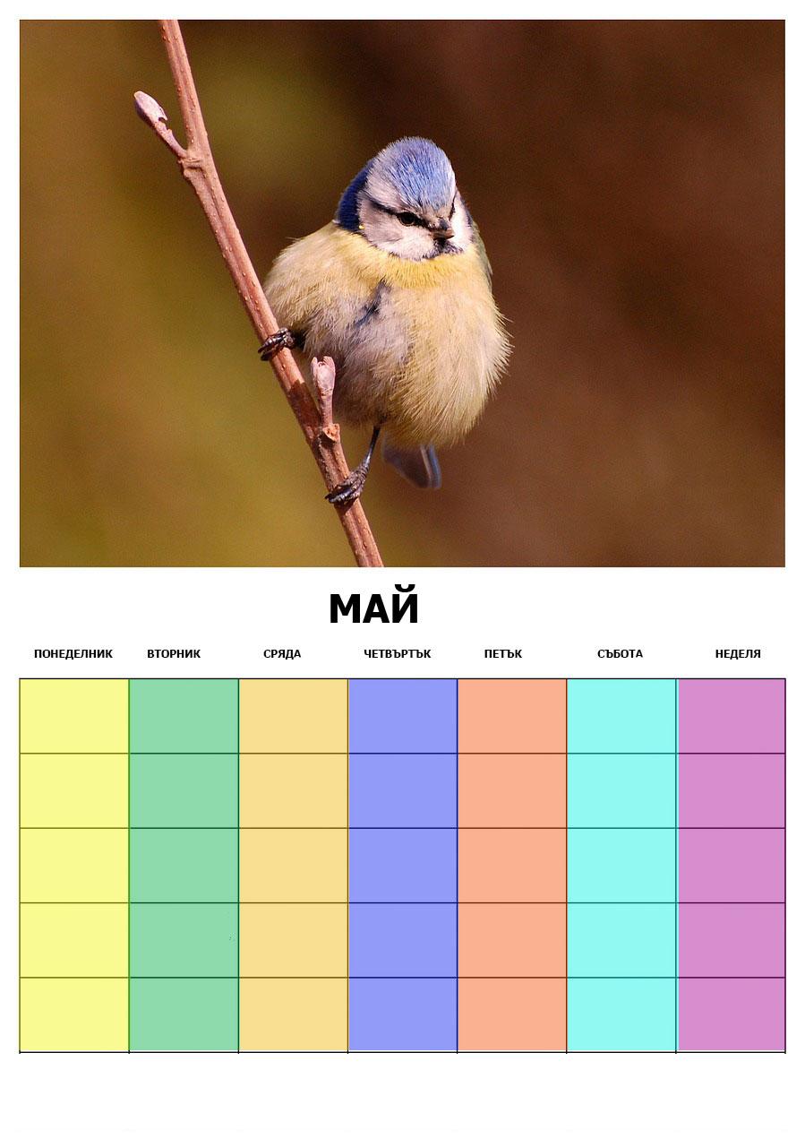 calendar-440580_1280