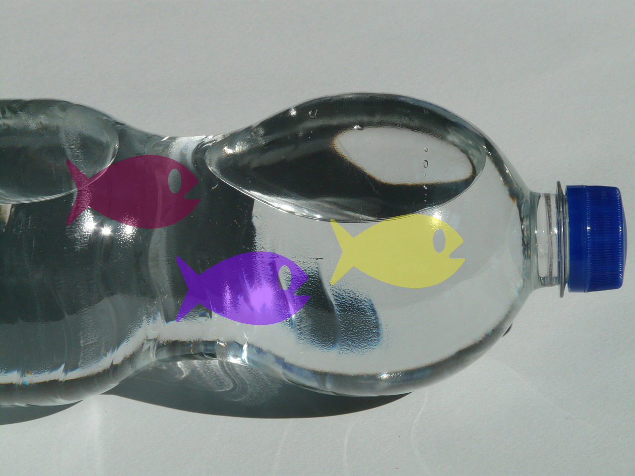 plastic-bottle-60468_1280