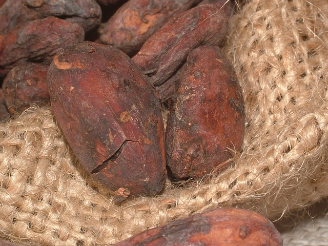 cacao-beans-91083_640