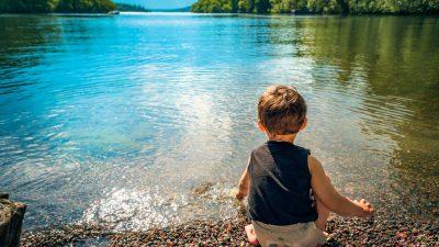 Детето и света на животните, растенията и минералите