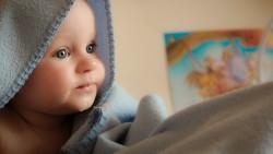 На 6 месеца: Тюлен