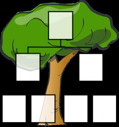 На 3 години: Семейно дърво