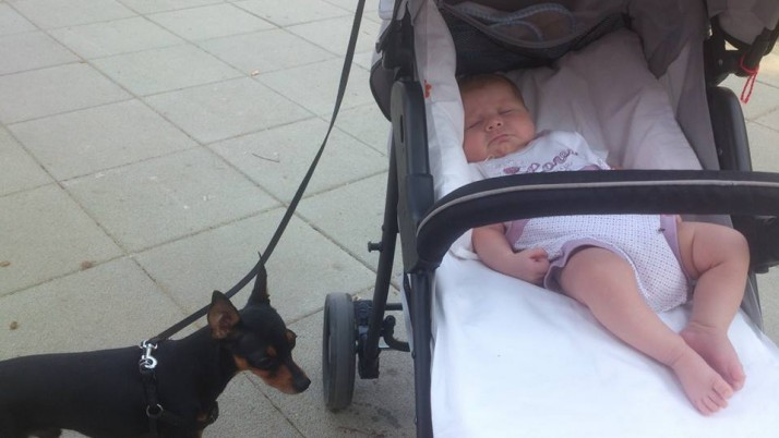 Моето детенце и кученцето ми