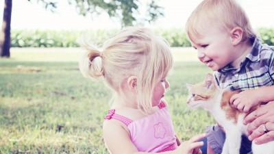 Игра за момичета, игра за момчета… или как полът влияе на играта?