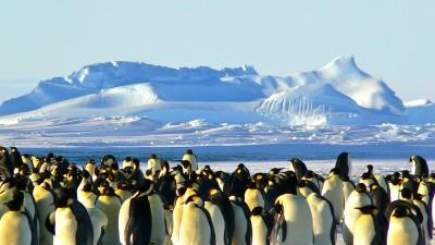 На 5 години: Какво има по нашата планета Земя -Африка и Антарктида