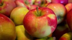 Игри, вдъхновени от …ябълките